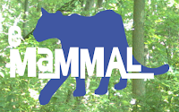 eMammal Lite – Practice Identifying Animals and Learn Where They Live